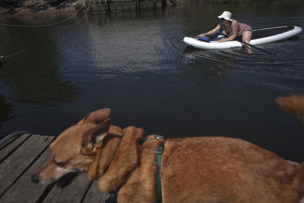 Além dos mergulhos, outras actividades invadem as águas