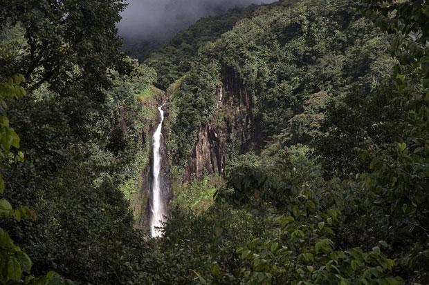 Guadalupe (Cascatas de Carbet)