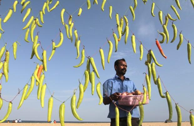 ÍNDIA, 10.07.2012. Em Chennai, um vendedor com o seu posto de venda decorado com pimentas verdes