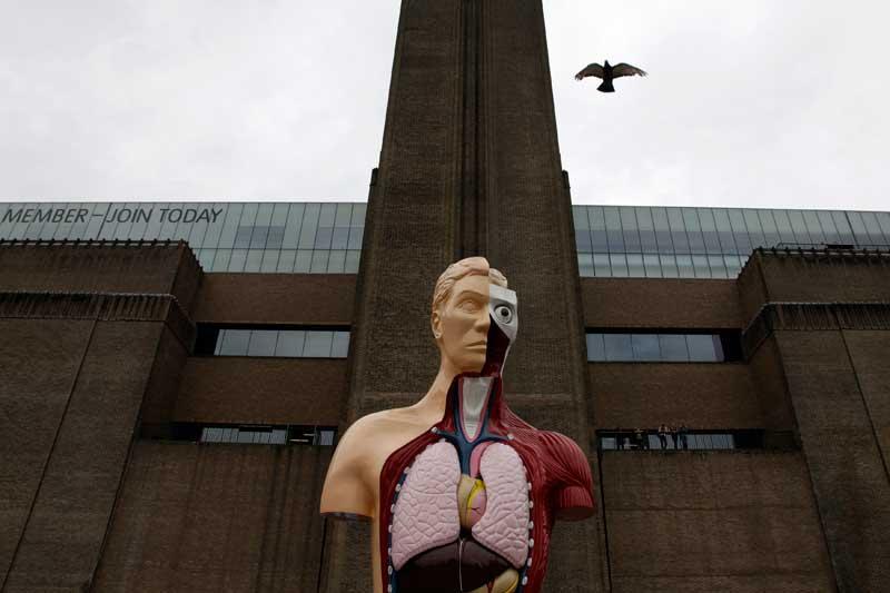 INGLATERRA, 21.08.2012. Um pombo voa sobre uma escultura de Damien Hirst,