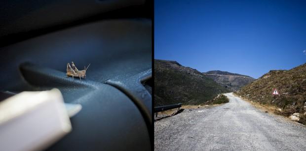 Pelas estradas da serra (dica: há que ter cuidado com a 'bicharada' que entra no carro e com estradas que se transformam em 'caminhos de cabras')
