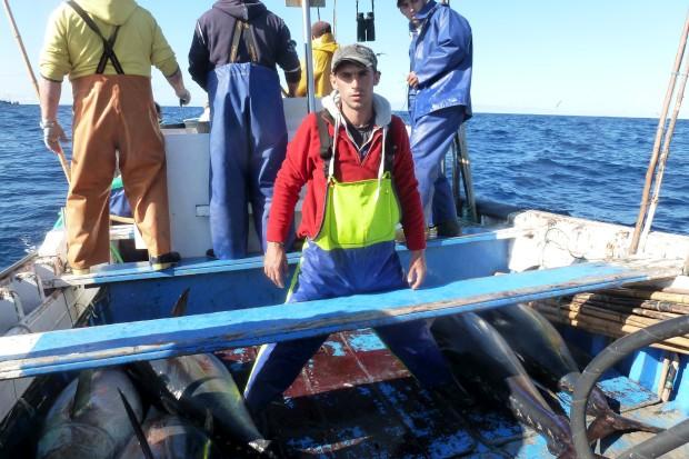 São Miguel. Na pesca do atum