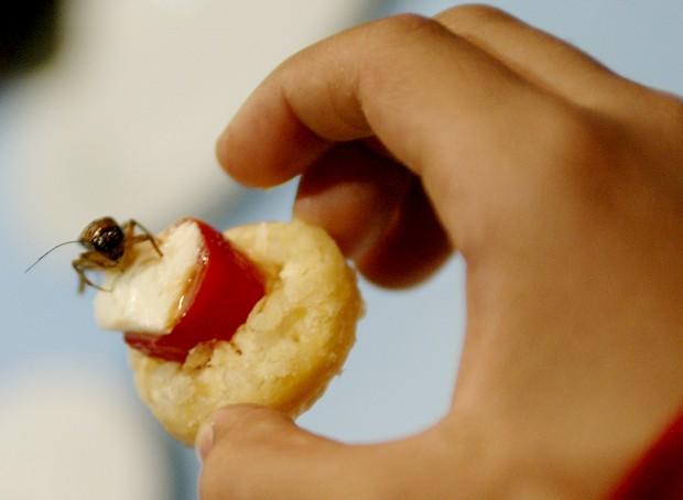 Este aperitivo foi servido no Museu Nacional de História Natural de Nova Iorque, EUA. Um jovem estudante   prepara-se para provar o petisco feito com um verdadeiro insecto. O momento fez parte de um evento do museu   chamado