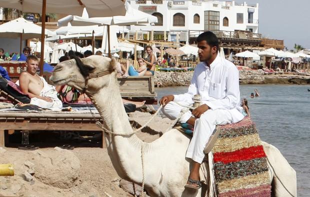 EGIPTO, 6.10.2012. Um beduíno passeia o seu camelo em busca de clientes entre os turistas. Em Dahab, Sinai, Mar Vermelho
