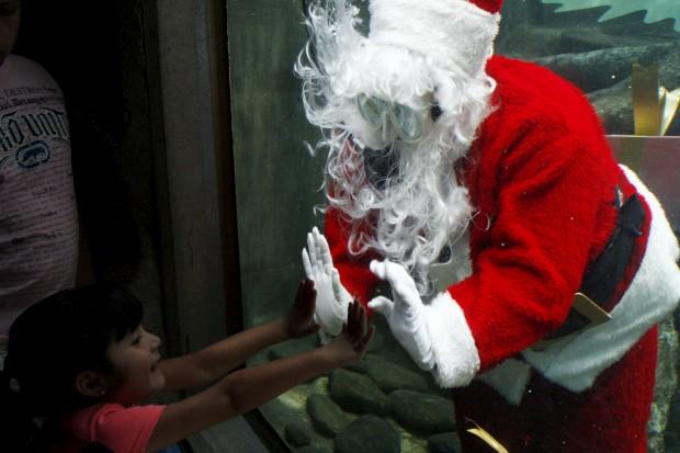 Pai Natal mergulhador no Aquário de Guadalajara