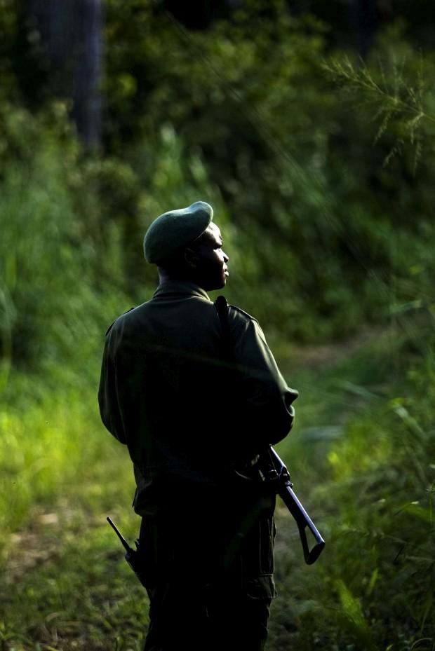 Um ranger escolta turistas durante um passeio no parque nacional de Katavi na Tanzânia