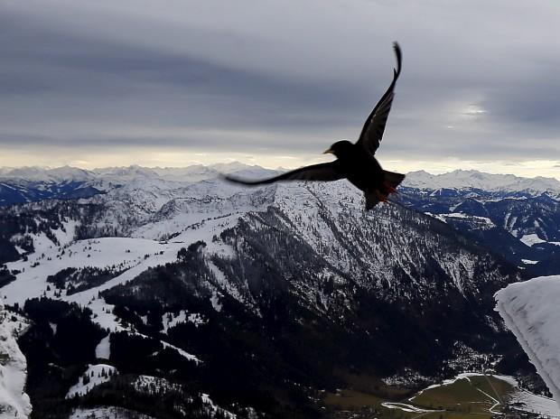 ALEMANHA, 8.1.2013. Na montanha Wendelstein com cenário Alpes a 1838m de altitude