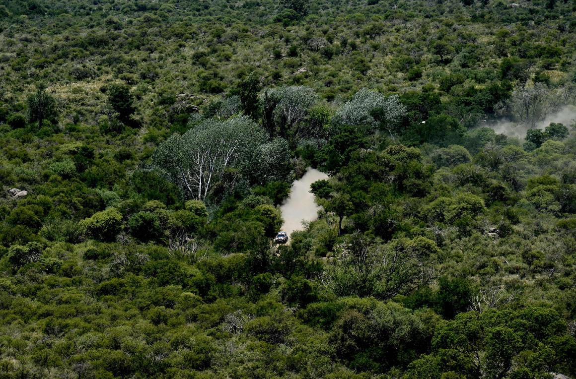 O argentino Orlando Terranova no meio da floresta do seu país