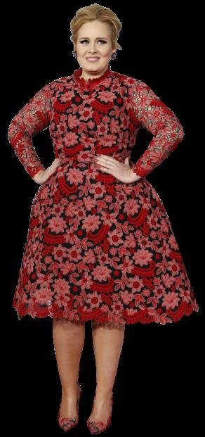 A figura da cantora britânica que foi mãe há pouco tempo é difícil de vestir. Mas Adele soube aproveitar uma das suas primeiras aparições públicas pós-maternidade para arriscar um novo look. Fugiu do preto habitual e apostou num padrão floral com um tamanho adequado à sua estatura. O vestido estruturado dá-lhe cintura e as discretas transparências evitam que tenham um ar pesado.