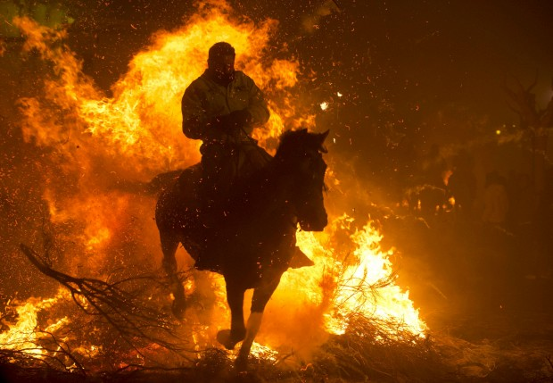 ESPANHA, 16.01.2013. Um cavaleiro salta com o seu cavalo sobre uma fogueira em San Bartolomé de Pinares, na abertura das festas de Santo António, patrono local dos animais