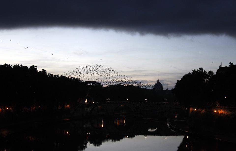 Anoitece em Roma e as nuvens (e os bandos de estorninhos) cercam a cúpula da Basílica de São Pedro