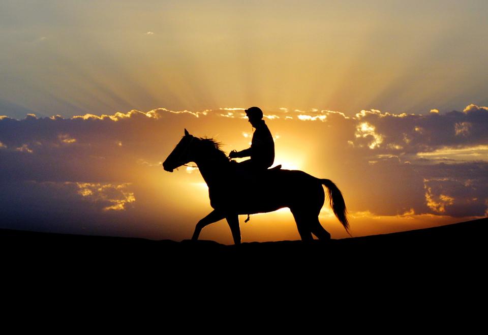 Ao nascer do sol, a inspeccionar o terrenos antes de corridas de cavalos em Birdsdville, a 1400km de Brisbane