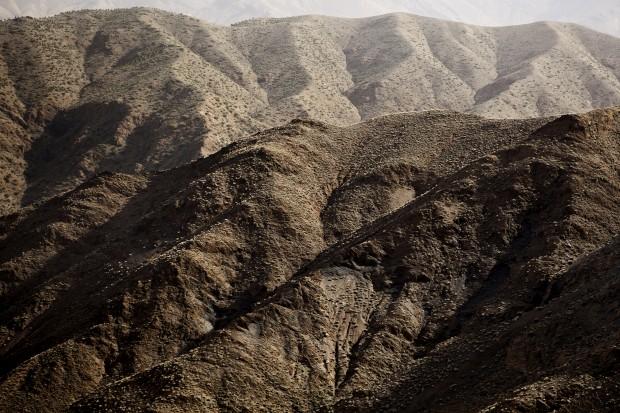 A vida à beira do deserto
