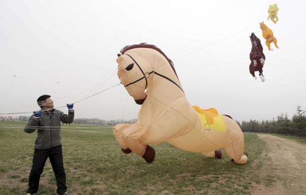 CHINA, 16.04.2013. O papapagaio-cavalo chamou as atenções numa feira de papagaios em Weifang, Shandong.