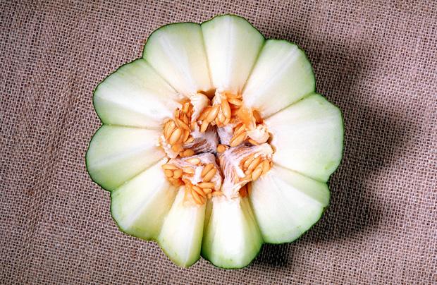 A meloa e o melão são particularmente ricos em vitamina C
