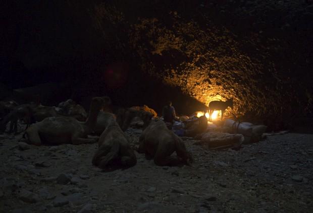 Comerciantes e os seus animais dão por finda a jornada e descansam
