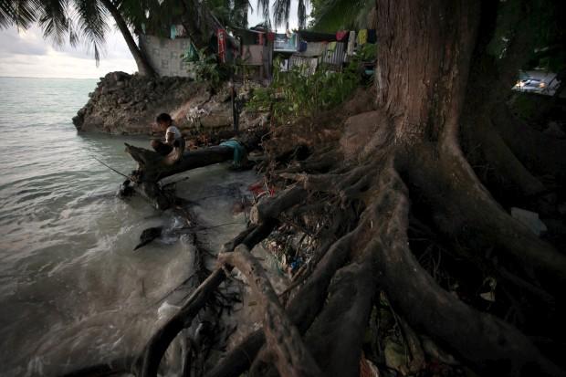Uma rapariga senta-se nas raízes de uma árvore, elevadas pelas marés, em Teaoraereke