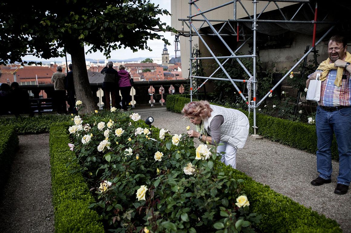 Bamberg, Jardim das Rosas