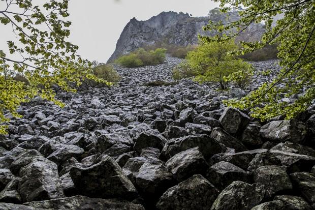 numa floresta de faias, toneladas de pedras deslizaram de um vulcão