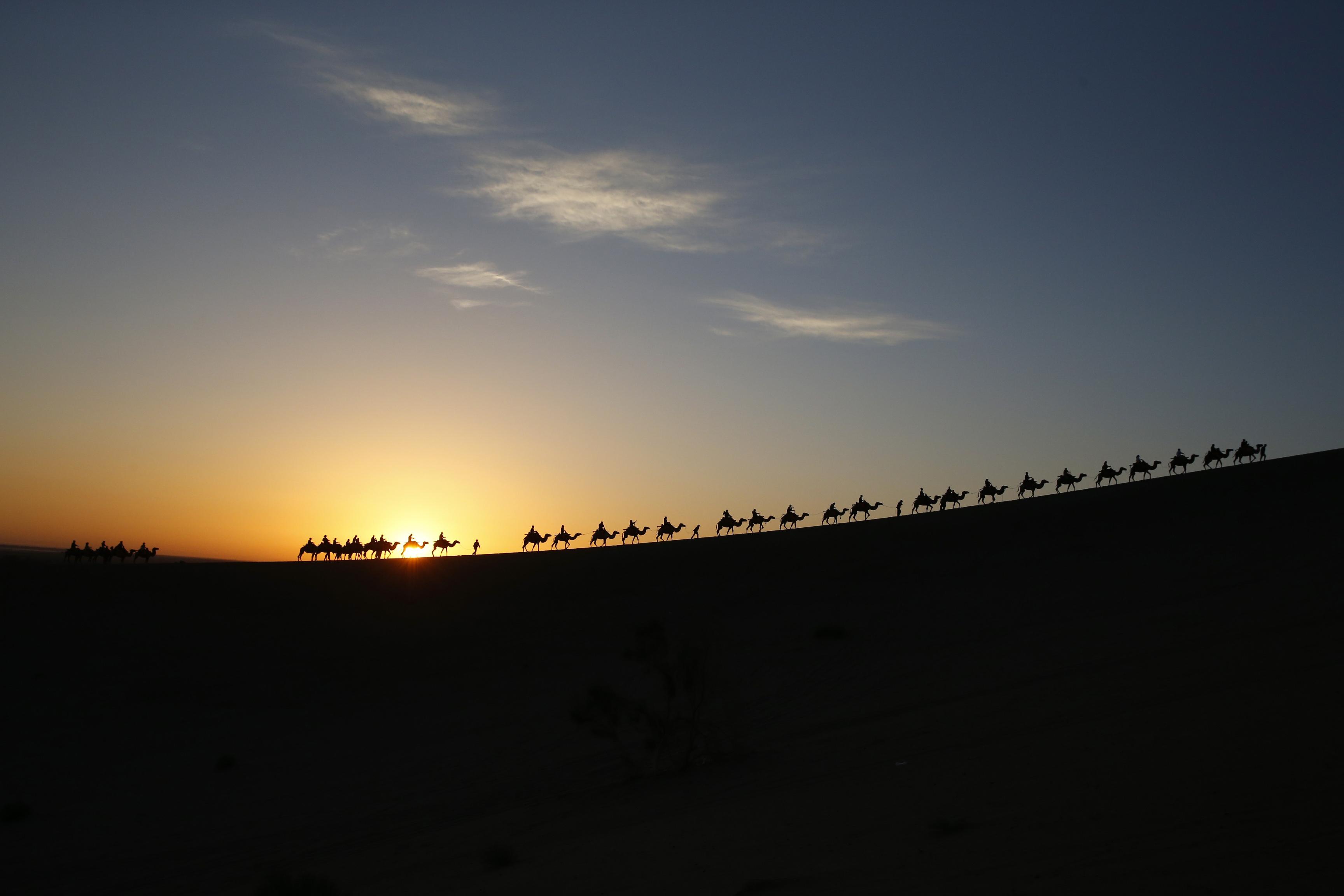 CHINA, 11.7.2013. Turistas passeiam de camelo ao nascer do sol em Dunhuang, província de Gansu.