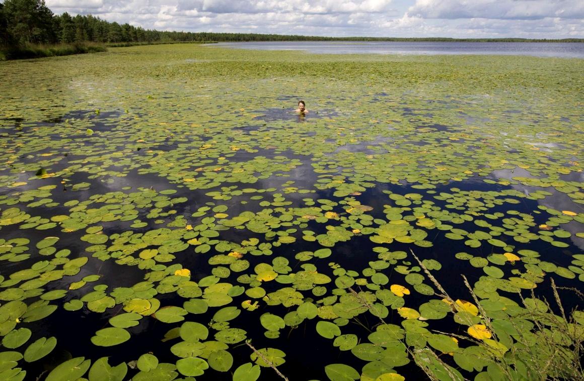 Um voluntário descansa num lago após participar na construção de um dique num pântano perto da remota aldeia de Luzhki,  a 220km de Minsk