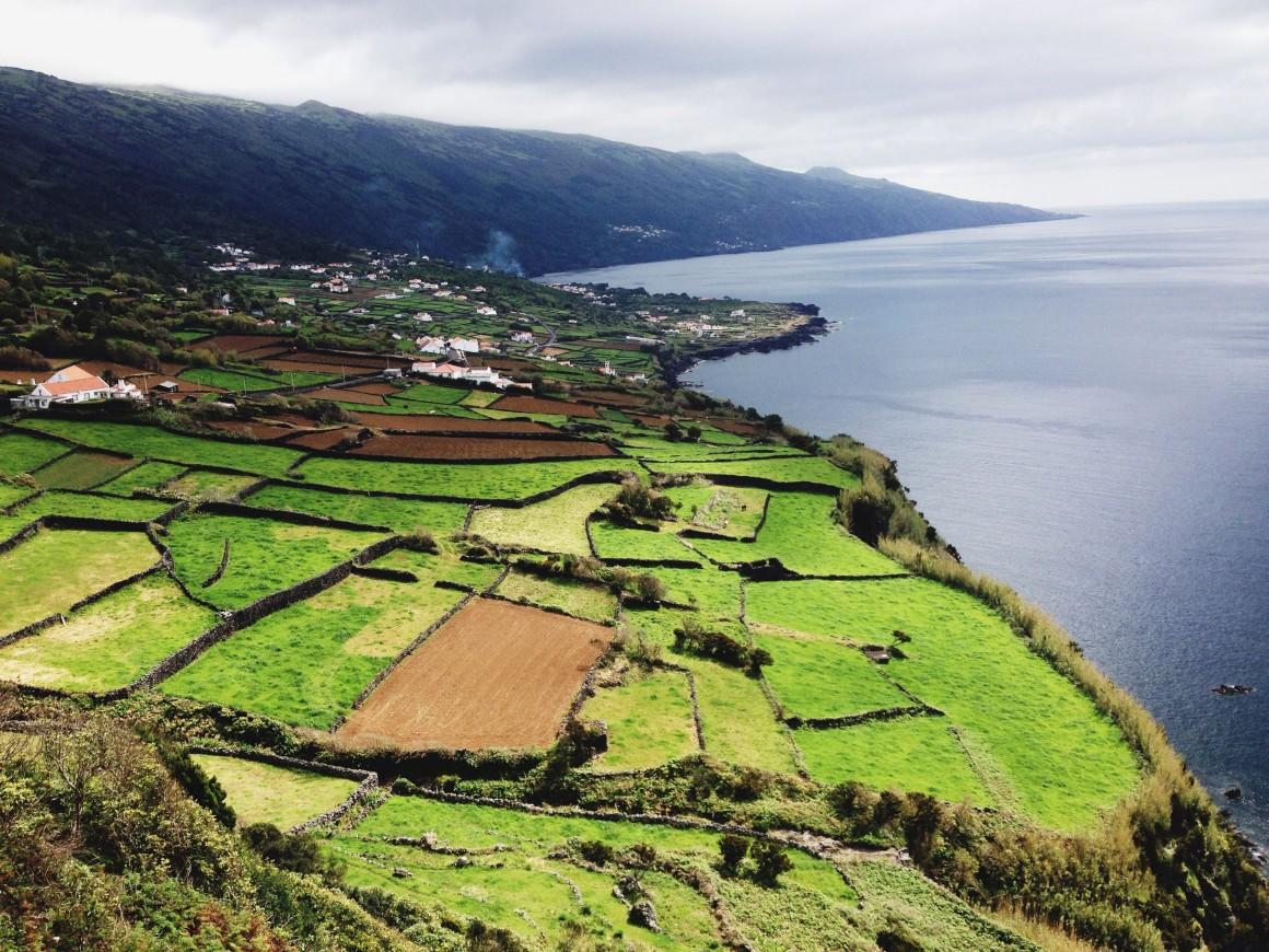 No mundo do Pico