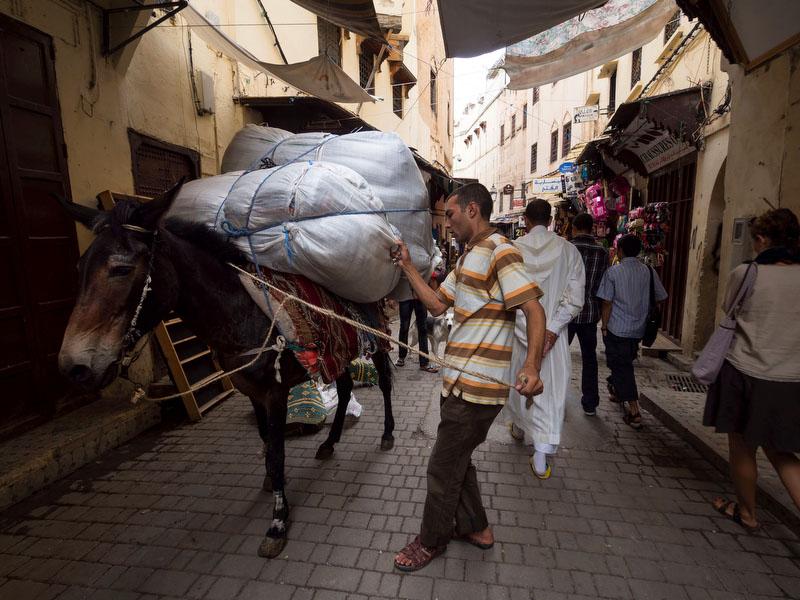Na medina de Fez, o trânsito automóvel é substituído por trânsito de burros e mulas