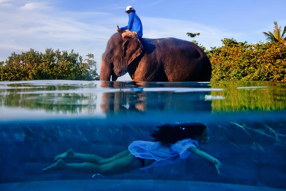 One Shot, vencedor, Justin Mott (EUA): Phuket, Tailândia