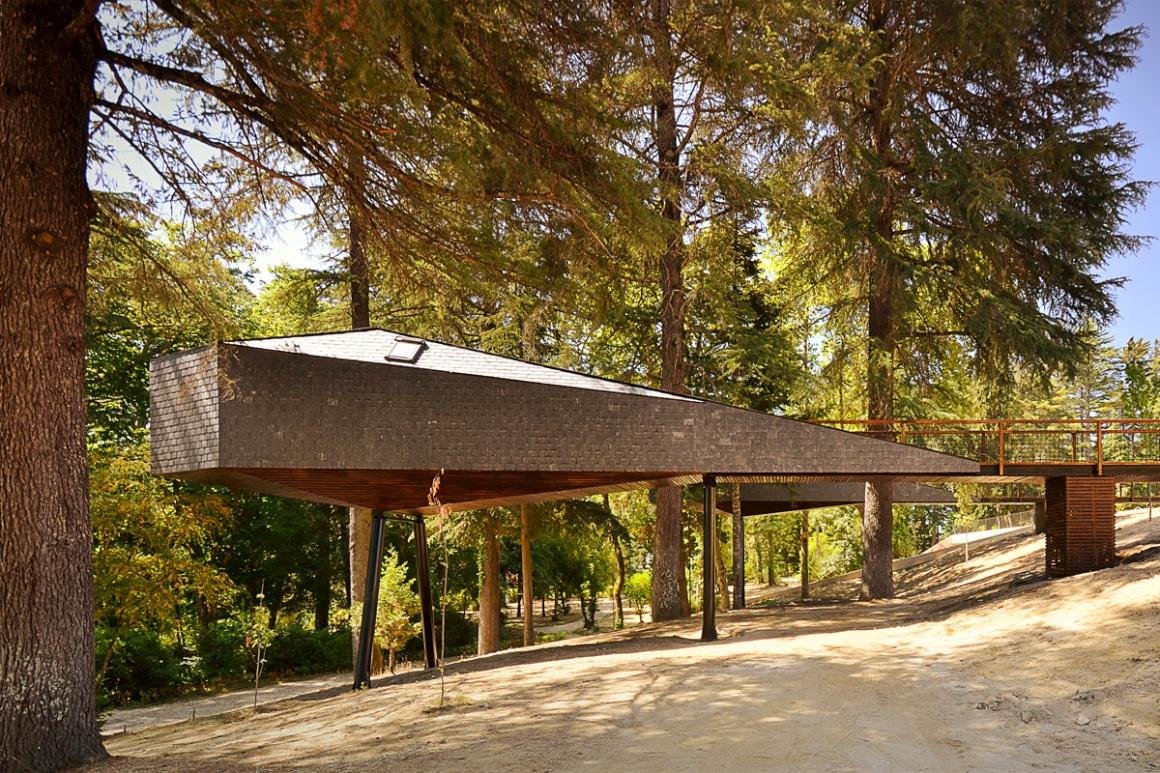 Snake Tree Houses, Pedras Salgadas