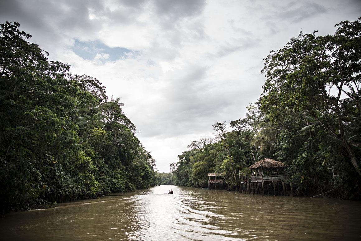 Belém do Pará, na fazenda a produtora de cacau orgânico Dona Nena