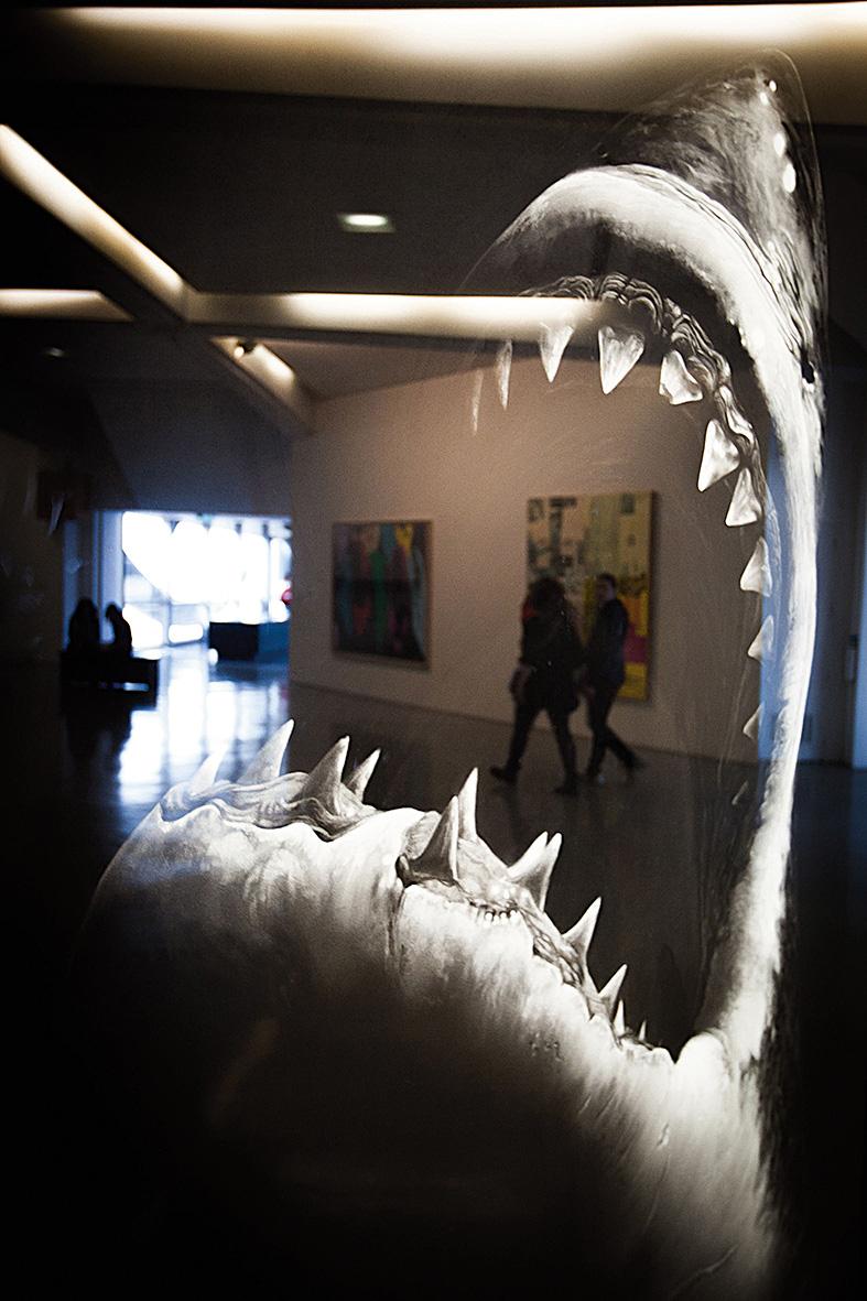 Nice, Museu de Arte Moderna