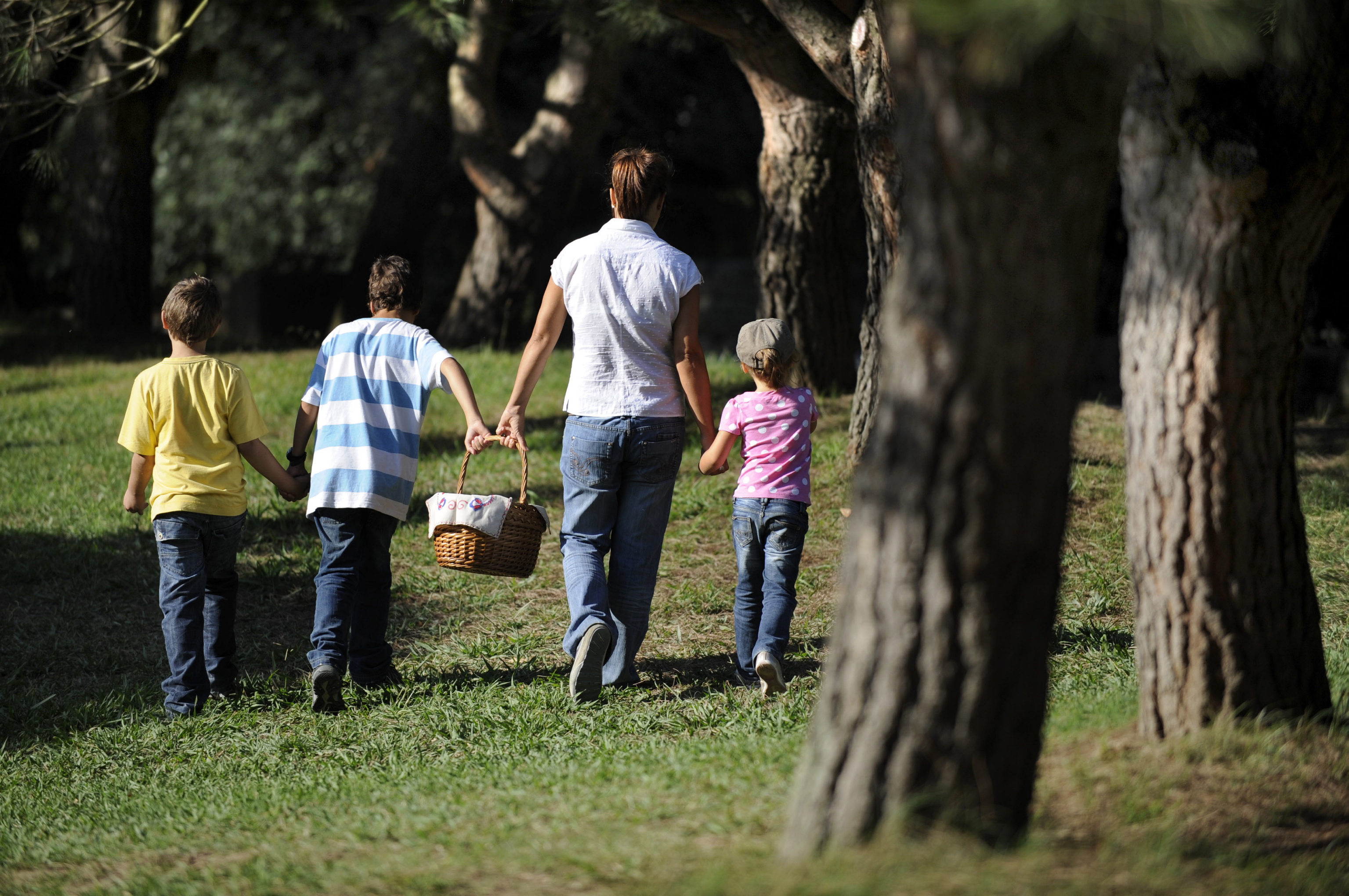 Um piquenique pode ser uma boa ideia para envolver a família