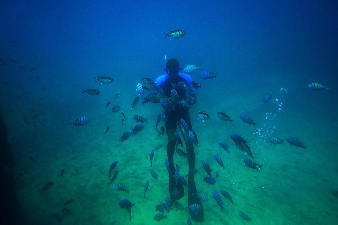 Cabo Verde, sabor a Sal