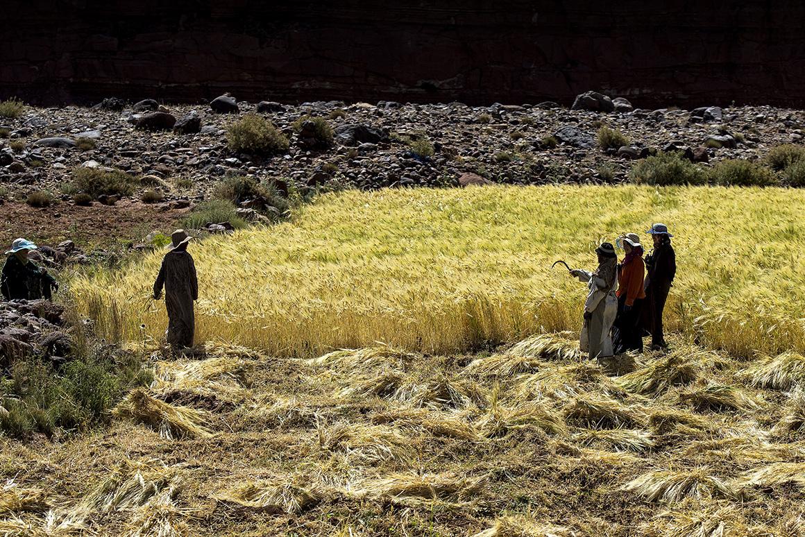 Marrocos, coração a sul
