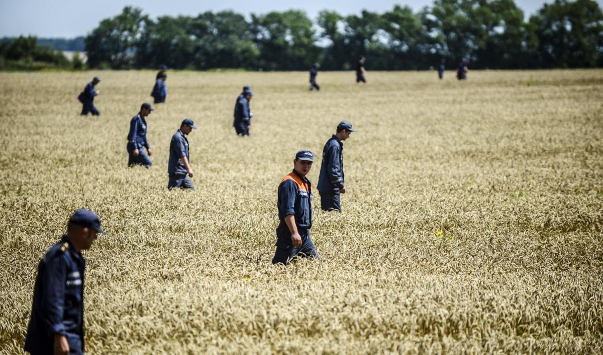 Membros dos serviços de emergência ucranianos procuram corpos das vítimas do voo MH17 na região de Donetsk