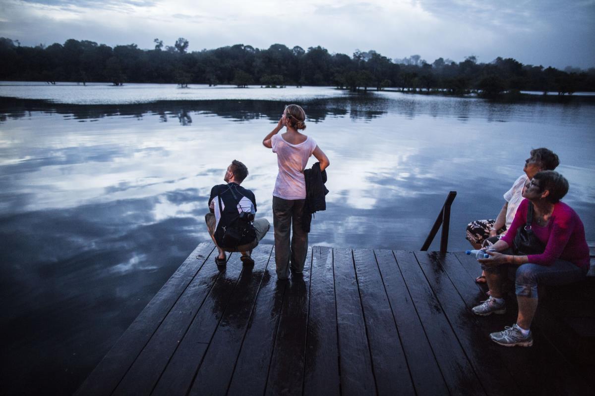 Manaus - Observação de vida selvagem