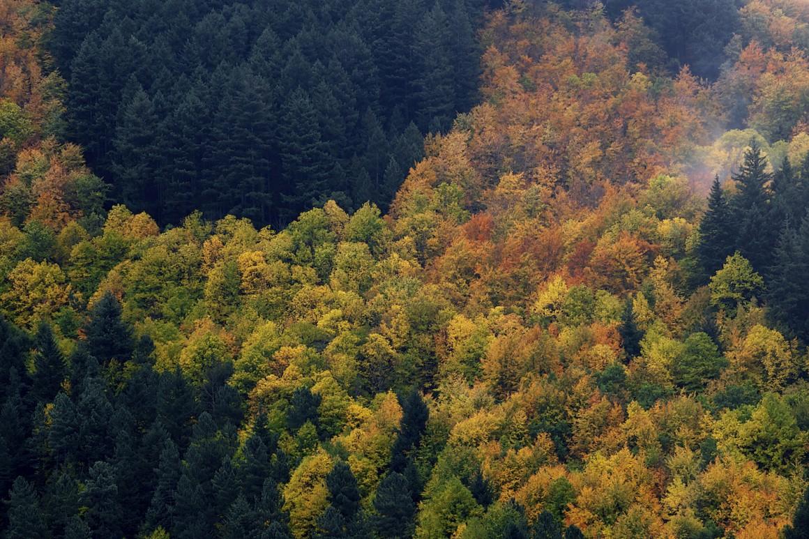 A zona do vale de Manteigas é um dos melhores locais para contemplar o Outono em Portugal