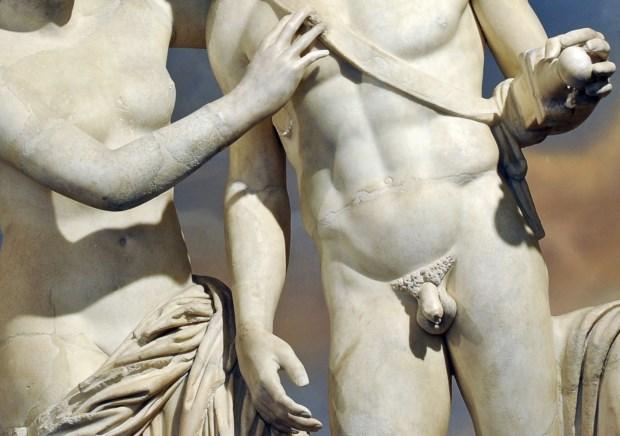 O estudo revela que o comprimento médio de um pénis em erecção é de 13,12 centímetros
