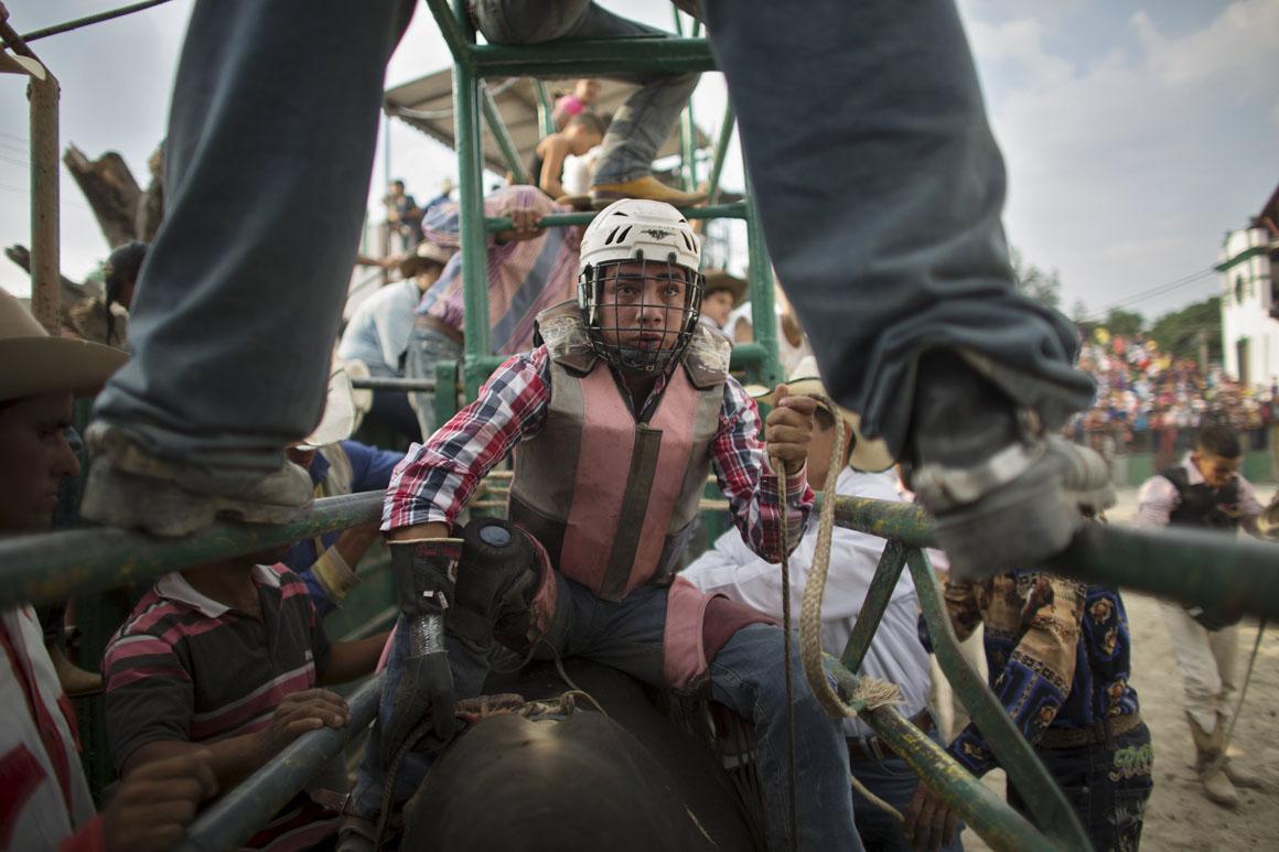 Alexis Azeituno prepara-se para montar um touro no recinto de Rancho Boyeros, em Havana. Este rapaz de 25 anos é natural da Guatemala