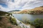 """As mãos no volante e os olhos no Douro, na """"melhor estrada do mundo para conduzir"""""""