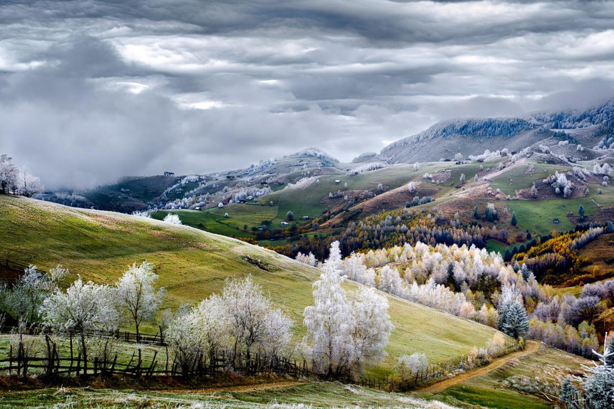 Menção Honrosa - Brasov, Roménia