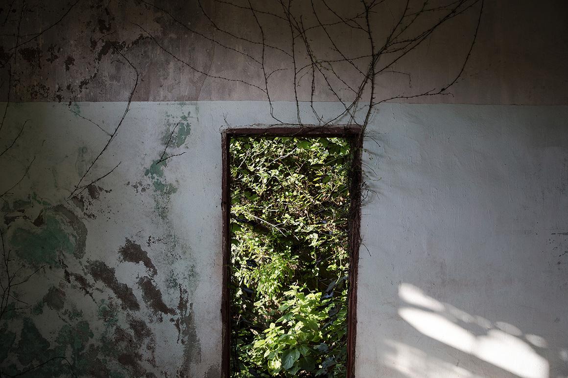 A Natureza vai substuindo o Homem na vila abandonada