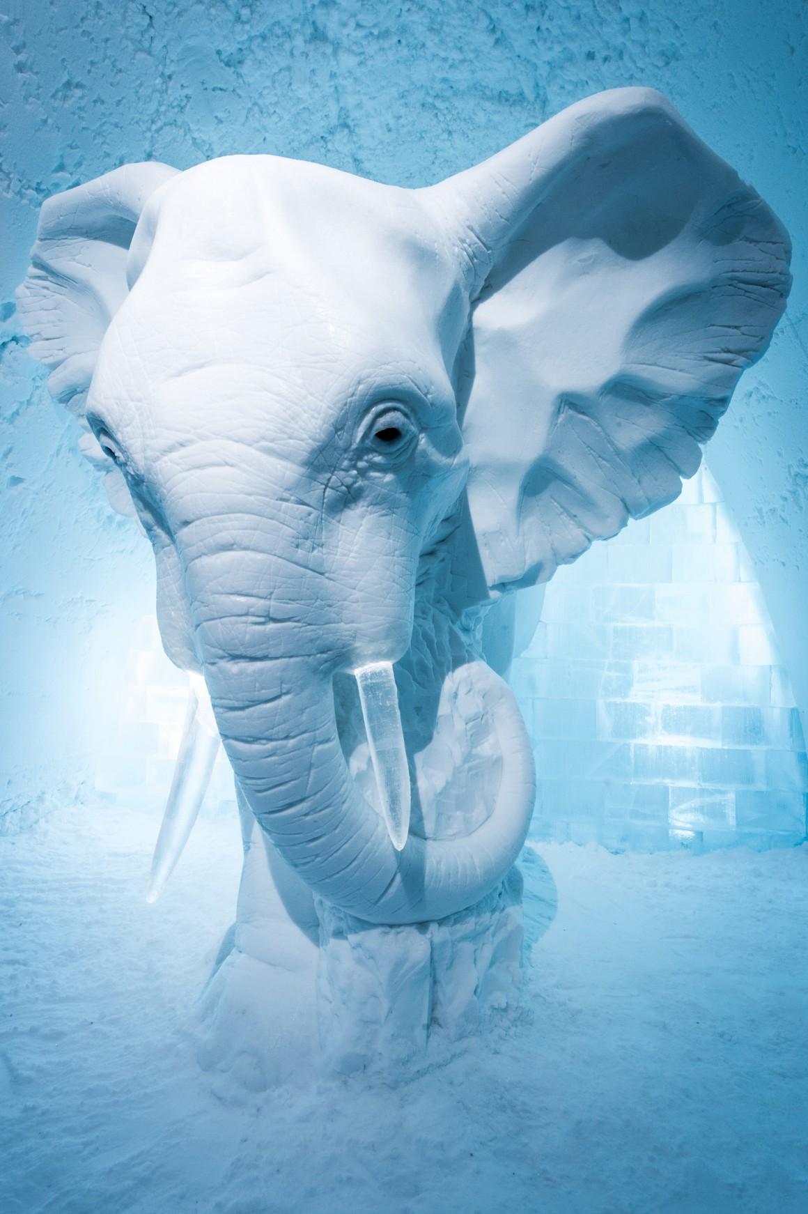 Art Suite: Elephant in the Room. Design: AnnaSofia Mååg (Suécia)
