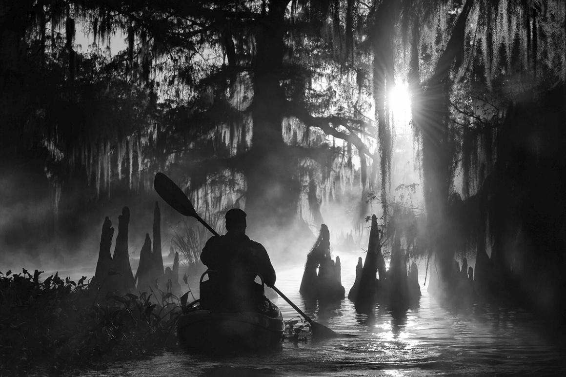 Vencedor global: Marsel van Oosten (Holanda). Na imagem: os pântanos de Atchafalaya, Luisiana, EUA