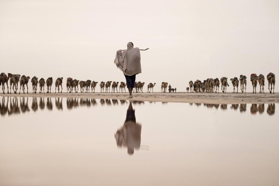 Água: Menção honrosa para Joel Santos (Portugal) . Na imagem: um mineiro do sal conduz os seus camelos na região de Afar, na Etiópia