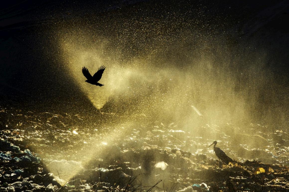Água. Vencedor: Jasper Doest (Holanda). Marchena, Andaluzia, Espanha. Na imagem: água é lançada sobre a lixeira municipal.