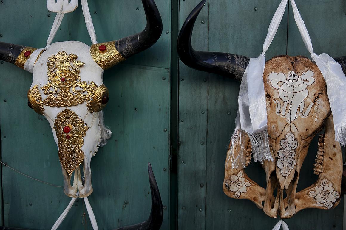 Crânios de iaques decorados são vendidas numa loja na parte antiga de Lhasa