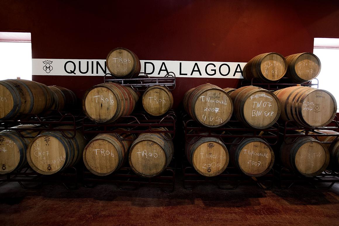 """Sociedade Agrícola da Quinta da Lagoalva (Melhor Enoturismo, Prémios """"Turismo do Ribatejo"""")"""