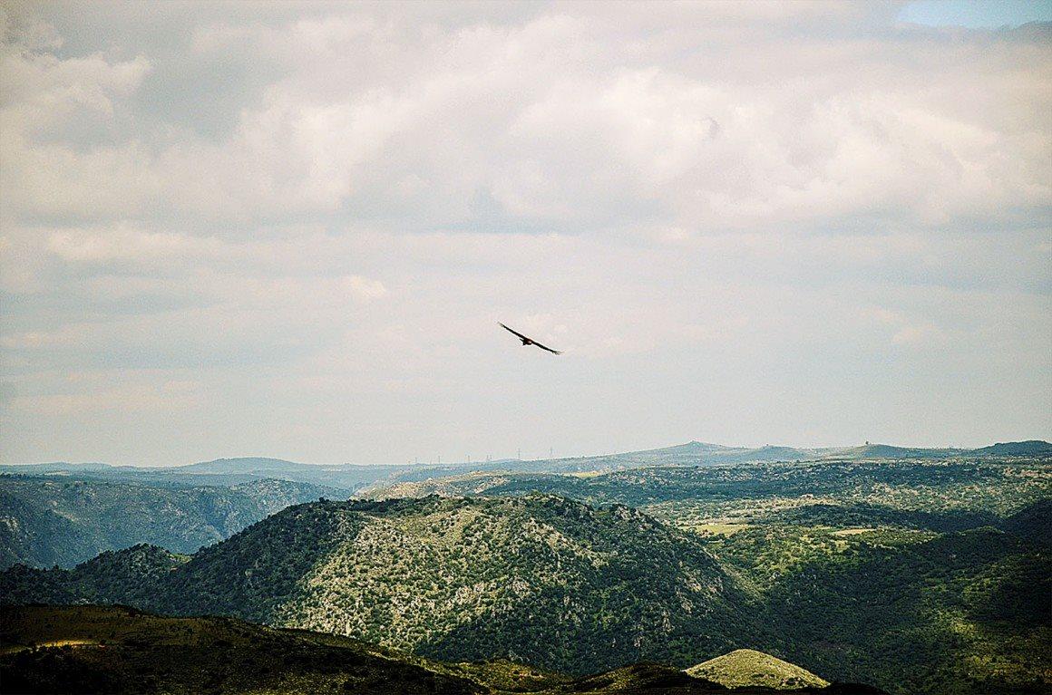 Miradouros de Portugal