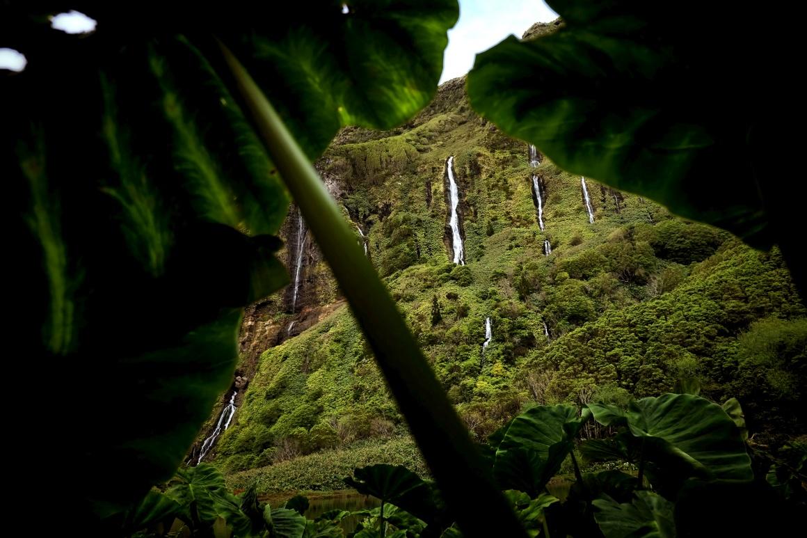 AÇORES - Flores - zona do poço da ribeira do Ferreiro (também chamado da Alagoinha ou das Patas)
